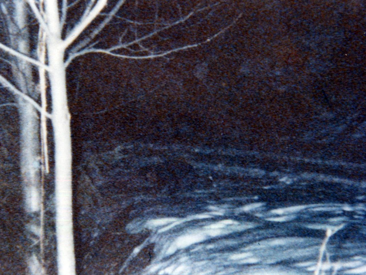 gnomo-che-mangia-neve