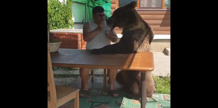 Stepan, l'orso che divide lo yogurt con il suo padrone
