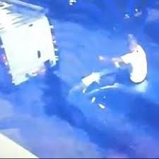 Follia Sneijder: sale su un'auto e distrugge il parabrezza