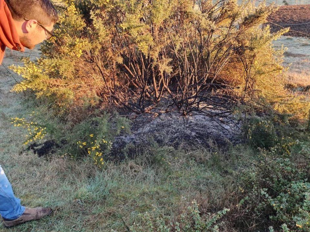 Sconcerto in Cile, per l'Ufo che ha scatenato sei incendi